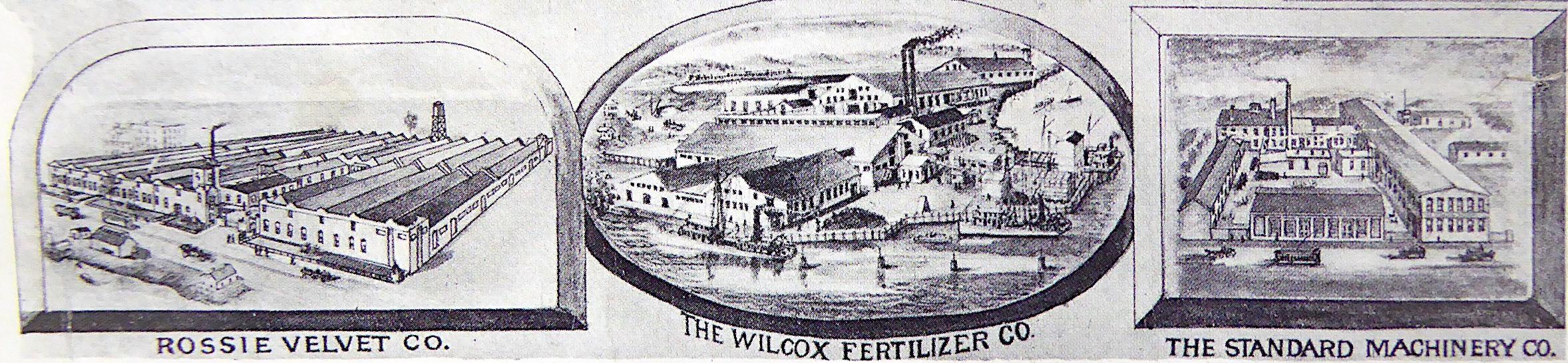 Wilcox strip